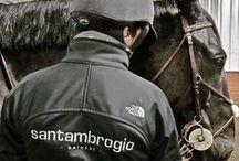 Sponsor di un campione d'equitazione! / Sponsorizziamo un campione internazionale d'equitazione! Le divise con il nostro logo faranno parte dell'evento sportivo. Manca poco!!