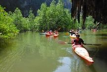 School group trips / Some of the many pics from various school group trips in Phang Nga Bay and Khao Sok National Park.