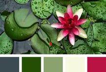 alliance des couleurs