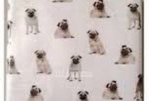 Where can I find this / Pug bet set