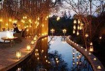 Pool / My dreams pool