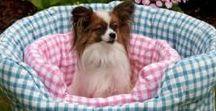 Stylish Pets / Treat your furry pet friend with a stylish pet accessory!