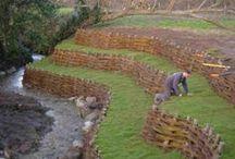 Ideas for Buttermilk Spring Farm