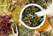 Herbs / For eating and healing