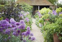 zahrady - gardens