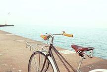 Bikes / by Diana Mieczan
