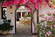 Courtyards, Verandahs, Outdoor Rooms / by RRM R