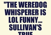 Cleo Tidwell Paranormal Mysteries / Novels: The Weredog Whisperer and The Haunted Housewives of Allister, Alabama by Susan Abel Sullivan. Celebrating the novels' wit, Southern charm, and occasional haunted velvet Elvis.