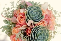 Dream wedding/BOUQUET