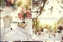 Dream wedding/ INSPIRATION / Wedding inspirations