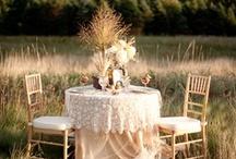 Dream wedding/TABLE SETTINGS