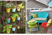 Home - backyard / by Kim Donegan