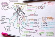 SYSTEMS: Endocrine / structure and functions of the organs of the endocrine system & disorders