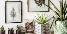 Collection Green Addict / Une tendance déco aux motifs et aux inspirations végétales, des matières naturelles et des teintes vertes et dorées