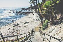 Beach Obssessed