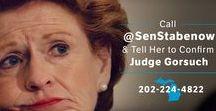 Stop Stabenow / Help us defeat Sen. Debbie Stabenow in 2018.