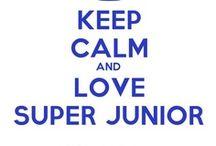 Super Junior / Ever Lasting Friends