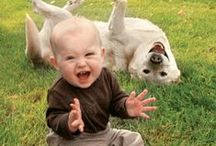 Zwierzak najlepszym przyjacielem Dziecka / Dziecko wychowywane wśród zwierząt jest spokojniejsze, uczy się odpowiedzialności. A ile radości dostarczają wspólne zabawy!