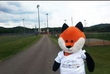 #whereisfelix? / #whereisfelix is our new weekly Facebook game featuring our WCPR mascot, Felix the Fox! Follow Felix around each week as he visits one of our facilities/parks. The first person to guess his location wins a prize pack. Follow him around: www.facebook.com/WilliamsonCountyParksandRecreation