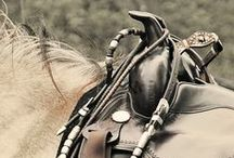 ☽ Riding Western ☾ / I want to get back into riding, one day the goal is to ace riding western ❤