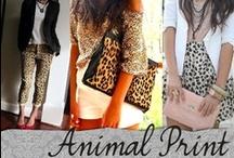 ANIMAL Print ! ღ / by Kαrolinα ღ