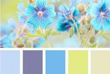 Farger Colors / Forskjellige farger