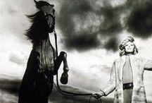 TPP Inspiration- Timeless Equestrian