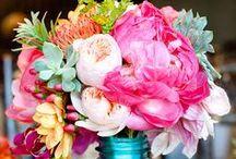 Virágok ☼  Flowers ☼