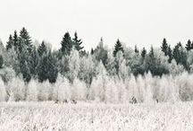 Snowy // I n s p i r a t i o n