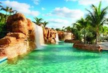 Tropical  Swimming Pools /  Tropical swimming pools. Tropical lagoon pool. Schwimmbäder. / by Anke Metzger