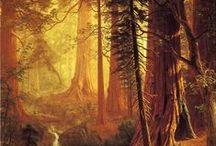 Art (landscape)- A.Bierstadt / Art (landscape) Bierstadt Albert