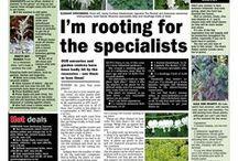 Sunderland Echo gardening column / Every Friday in the Sunderland Echo and online at www.sunderlandecho.com