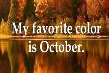 Autumn / The most gorgeous season