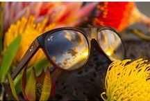 X-Wear / Maui Jim / Created on the Hawaiian Islands to make the colors shine, Maui Jim sunglasses feature patented PolarizedPlus2® lens technology for brilliant color so every detail is crisper and cleaner and without glare or harmful UV. Slip on a pair and See The Brilliance. (c) Maui Jim