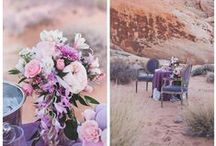 Theme: Desert Romance / Cactus and Lace Elopements: Stylized wedding theme with romantic décor of rich leafy greens with soft lilac and blush shades; infused with white lace and clear glass. (Silver & White)
