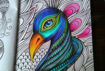 Jardim Secreto / Sobre colorir, amar as cores