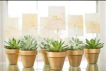 Concepts: Dreamy Desert Wedding / Lots of sutle greens and clean whites with shimmering golds and blush pinks