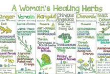 Herbal, Spice, & Fruit Teas