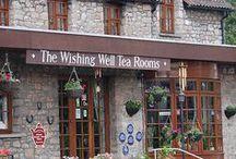 Tea Travel / Celebrating tea around the world