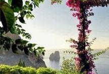 Honeymoon: Italy! / viaggi di nozze