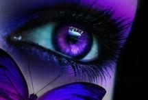 Palette - Purple