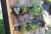DIY Sustainable Decor Concepts.