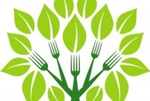 Event Food & Beverage Choices - Sustainable Matters