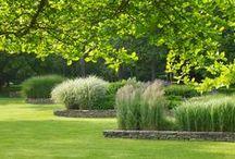 trädgårdsdesign: struktur, rumslighet, form / perspektiv, grundtänk, idéer