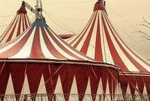 Circus Illustration Inspiration