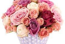 Moederdag bloemen en geschenken / Wie is de beste moeder die je kent, jouw mama, schoonmoeder, zus, beste vriendin? Elk van deze geweldige vrouwen in onze leven verdienen het om eens in de bloemetjes gezet te worden en misschien wel een beetje meer deze Moederdag. Geen zelfgemaakte cadeautjes meer (hoewel mama er gek op was), geef haar een attent geschenk, iets moois, iets dat haar dag goed zal maken. Dit is ons bord, toegewijd aan cadeautjes die ervoor zullen zorgen dat mama zich deze Moederdag zeker speciaal zal voelen.