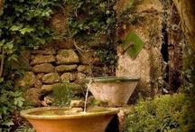 Garden ...gardening....