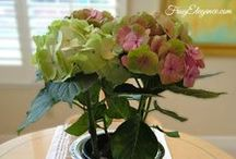Spring Home Decor Around The House / Home Decor Items that bring a fresh feeling of spring to your space.