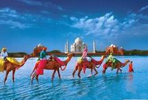 Different colors of India / Collection of beautiful pictures showing different looks of India