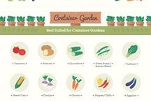 Gardening: Infographics and Visuals / All about gardening in form of infographics! Planting, seeding, weeding, protecting, and best of all, growing. Contributors: please limit your pins to five a day. Let's make this board a great gardening resource! Follow the board and leave a comment on one of the pins to be invited as a contributor :)